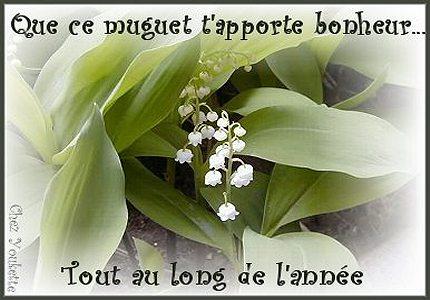http://nathalie28.free.fr/cartes_postales/muguet2.jpg